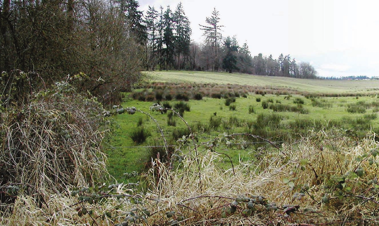 Christine Dupres: Cowlitz Tribe on long journey to reclaim land