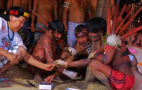 Yanomami Tribe buries blood samples studied without consent
