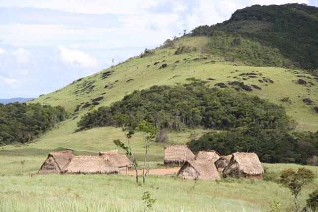 Research finds antibiotic resistance in remote Yanomami Tribe