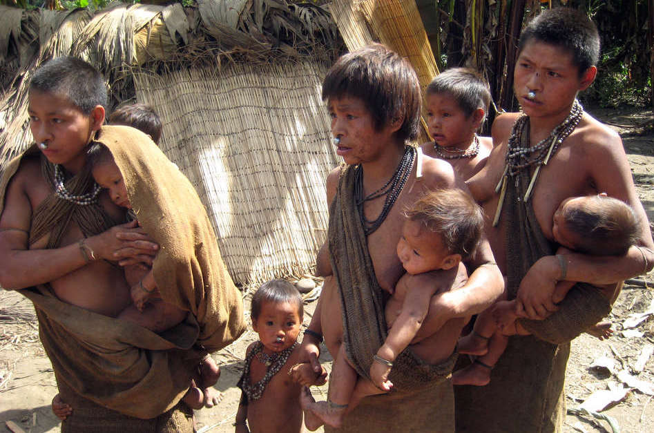 Isolated tribes in Amazon continue to face threats to ...