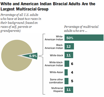 Americans of Indian and White heritage represent largest group
