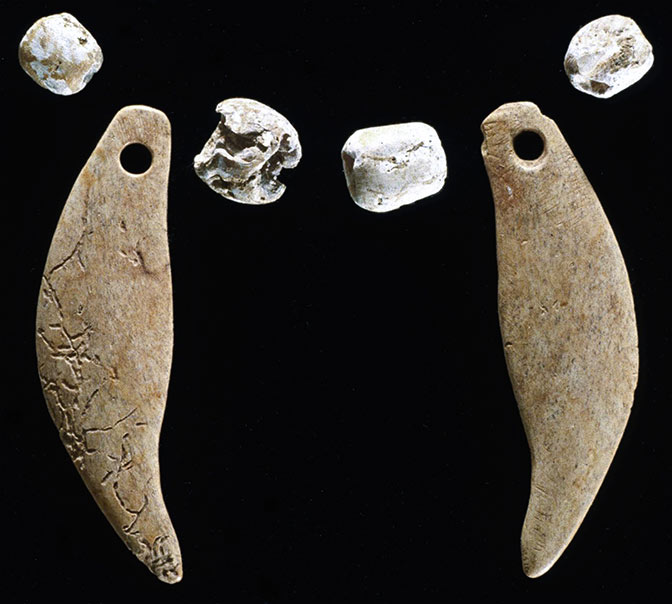 Bobcat wearing necklace found at Native burial mound in Illinois
