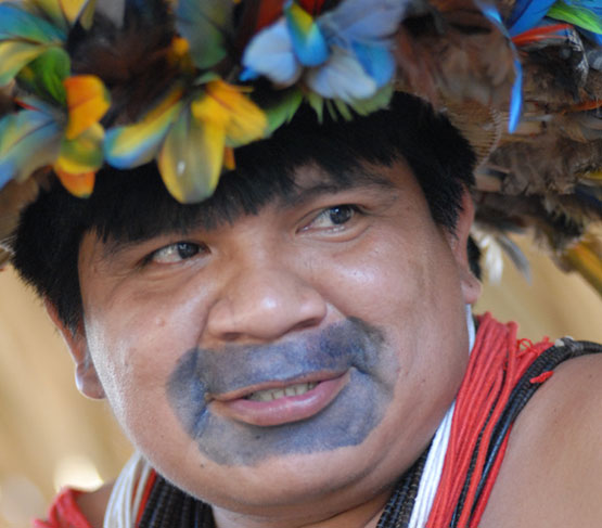 Indigenous peoples in South America and Australia linked