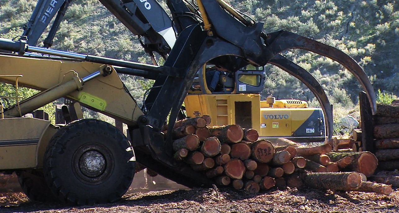 Colville Tribes announce closure of plywood mill in early 2016