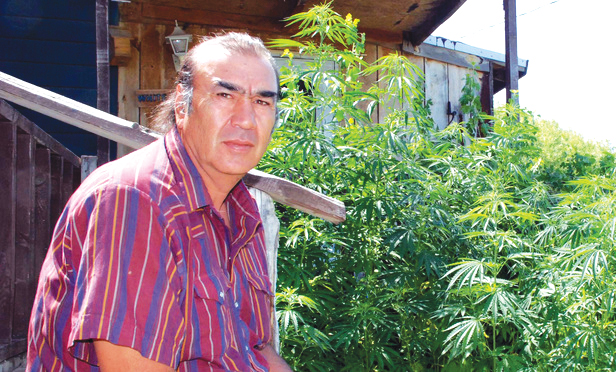 Native Sun News: Alex White Plume weighs next move on hemp