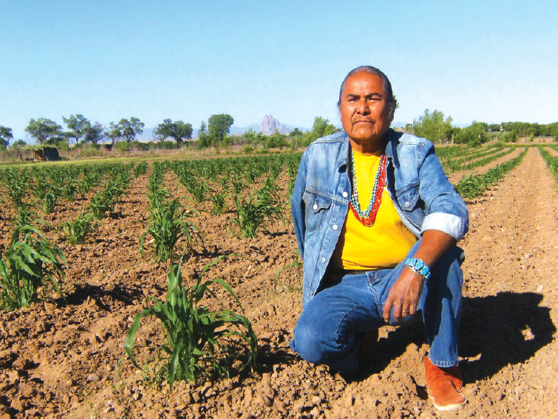 Native Sun News: Navajo Nation chapter sues tribe over water deal