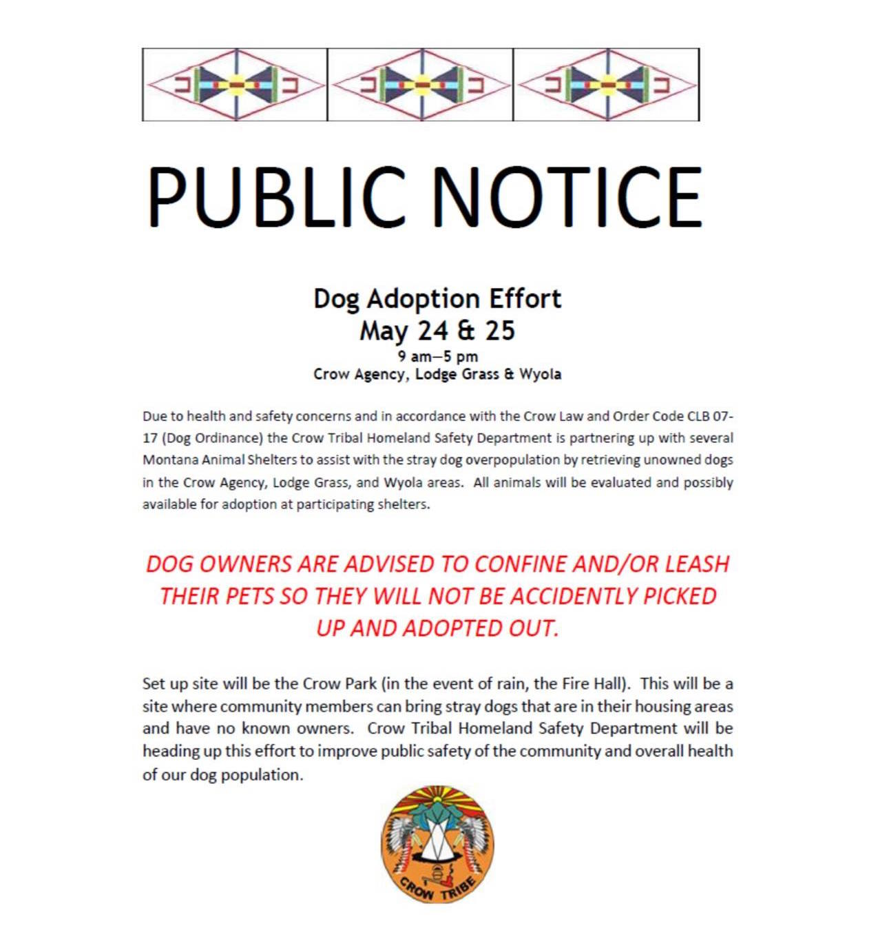 Crow Tribe schedules stray dog roundup and rescue operation