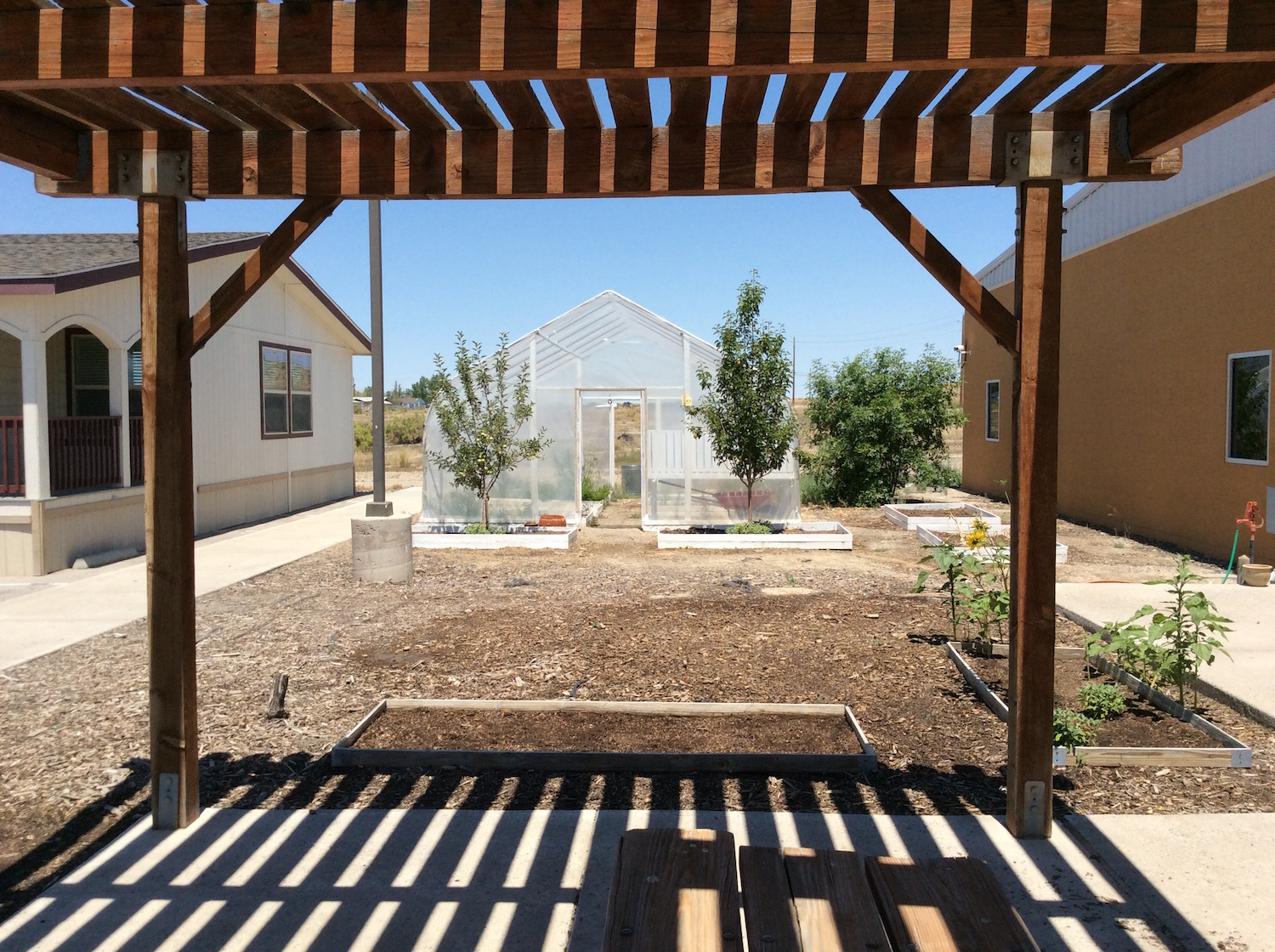 Reno-Sparks Indian Colony raises awareness of health issues with hoop house