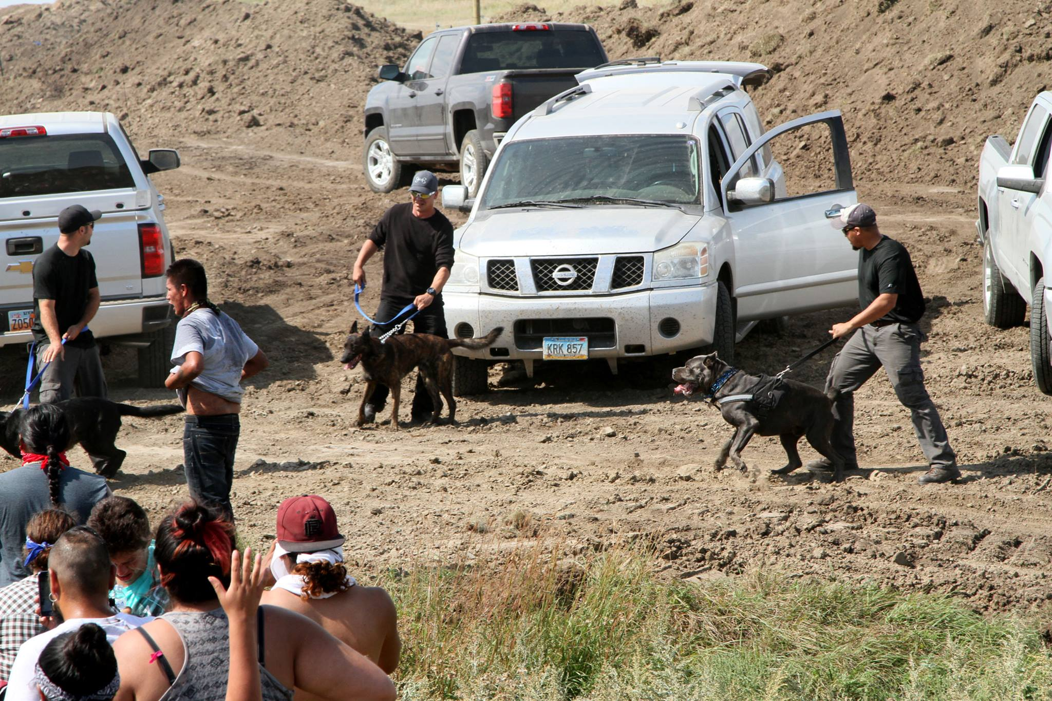 Sarah Sunshine Manning: Dogs attack peaceful #NoDAPL resisters