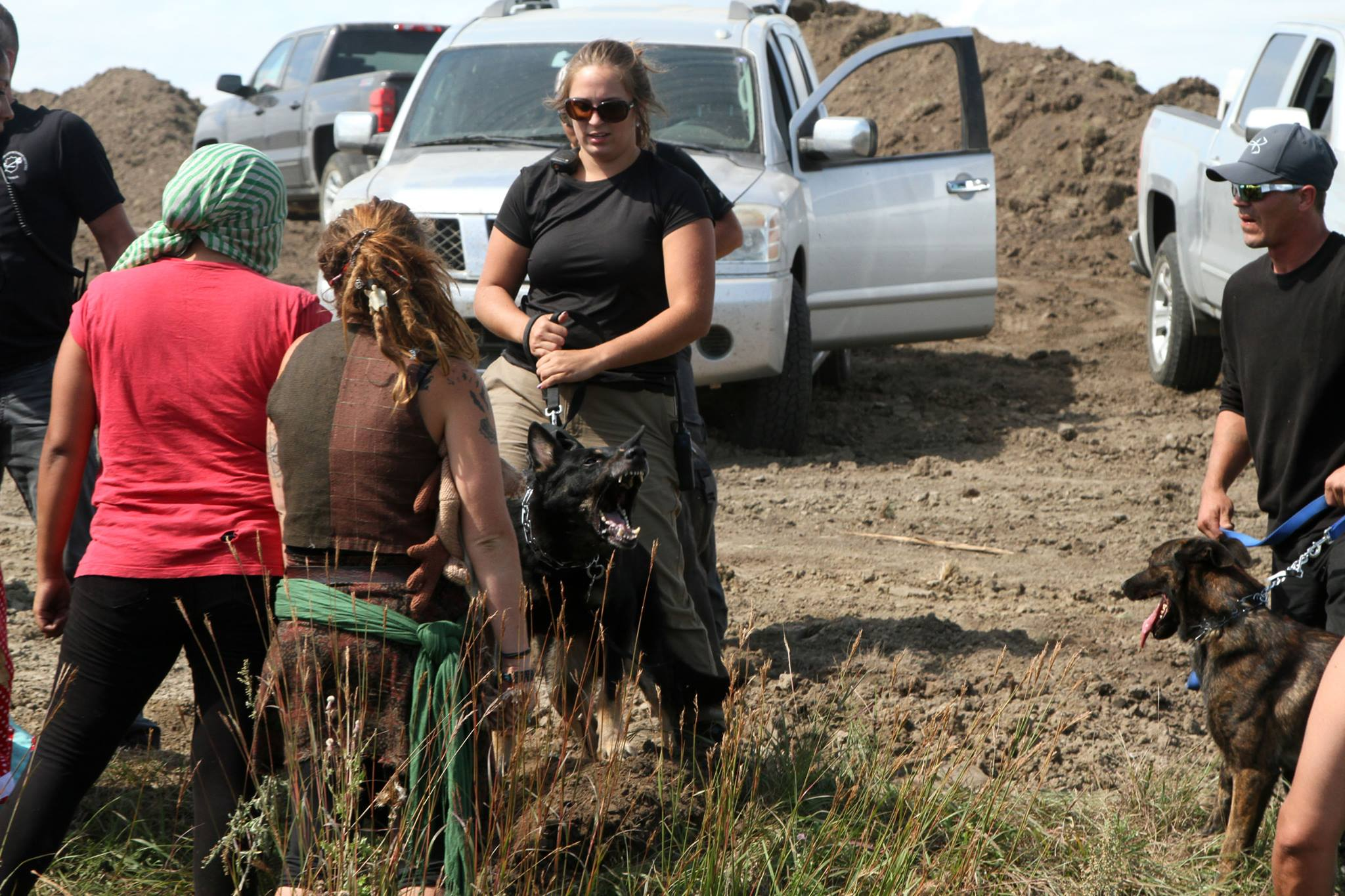 Steven Newcomb: Vicious dogs unleashed on #NoDAPL resisters