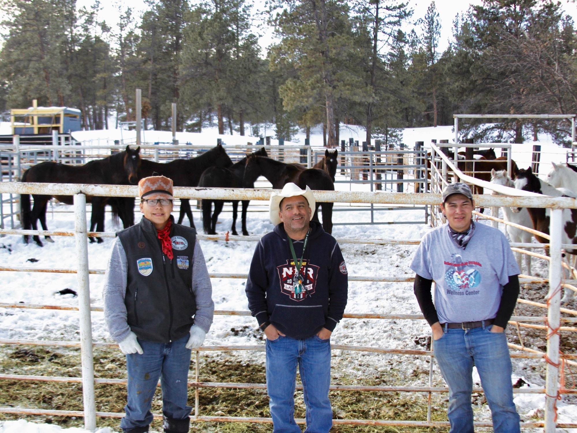 Native Sun News Today: Northern Cheyenne Tribe rounds up horses