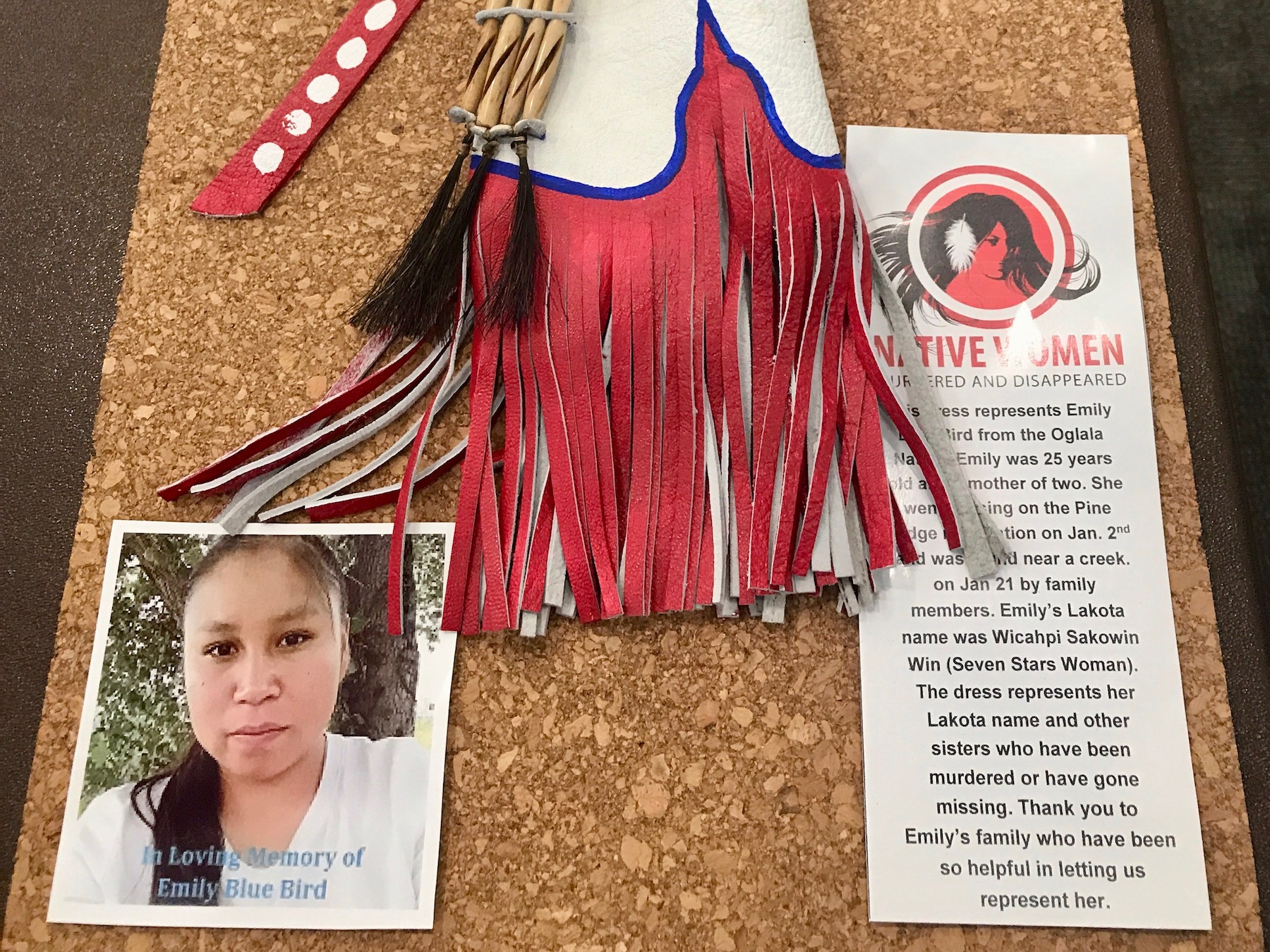 Mary Annette Pember: Awareness for missing and murdered sisters