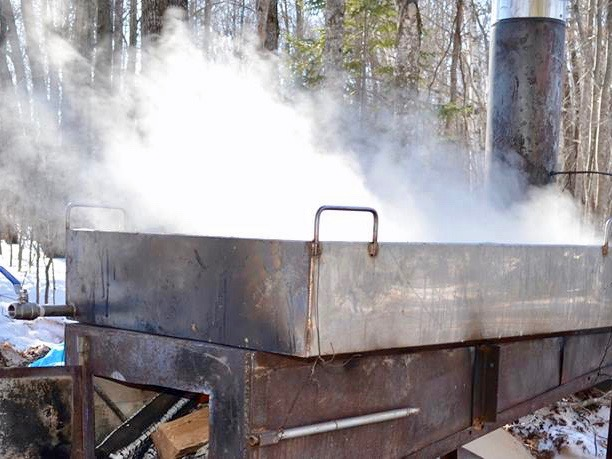 Mary Annette Pember: It's sugar bush time across Ojibwe country
