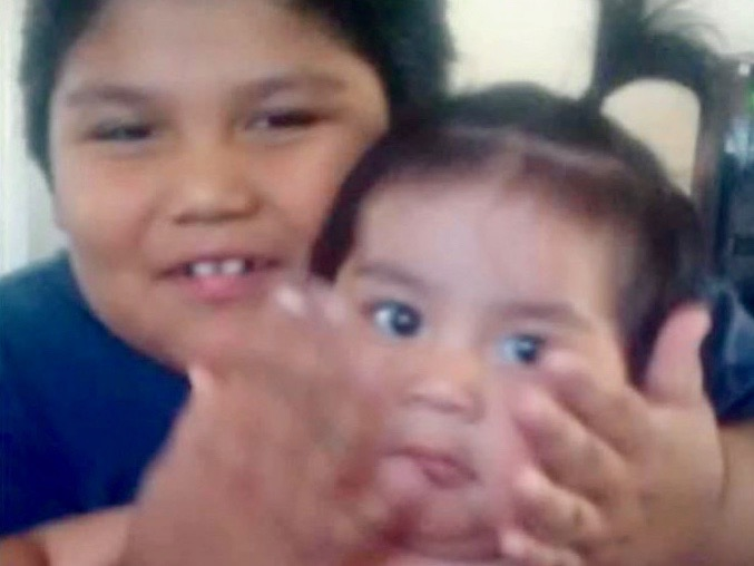 Shoshone-Bannock Tribes euthanize dogs after attack on two-year-old boy