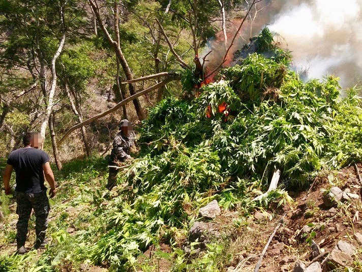 Brothers from Huichol Tribe murdered as drug war rages in Mexico