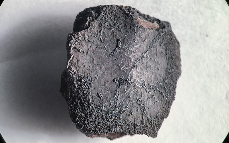 Cronkite News: Rare meteorite found in Arizona receives Apache name
