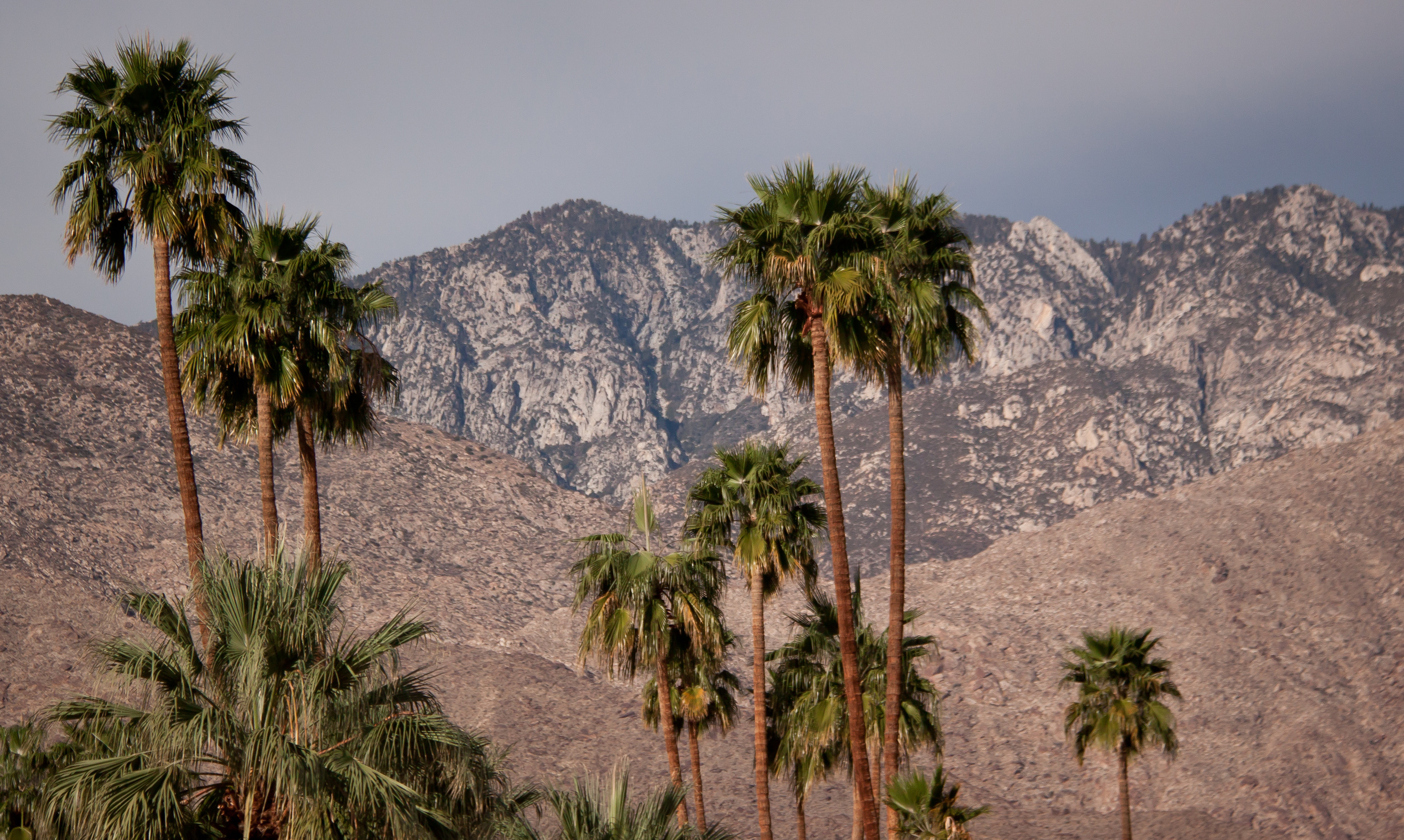 Agua Caliente Band water case draws attention in Supreme Court appeal