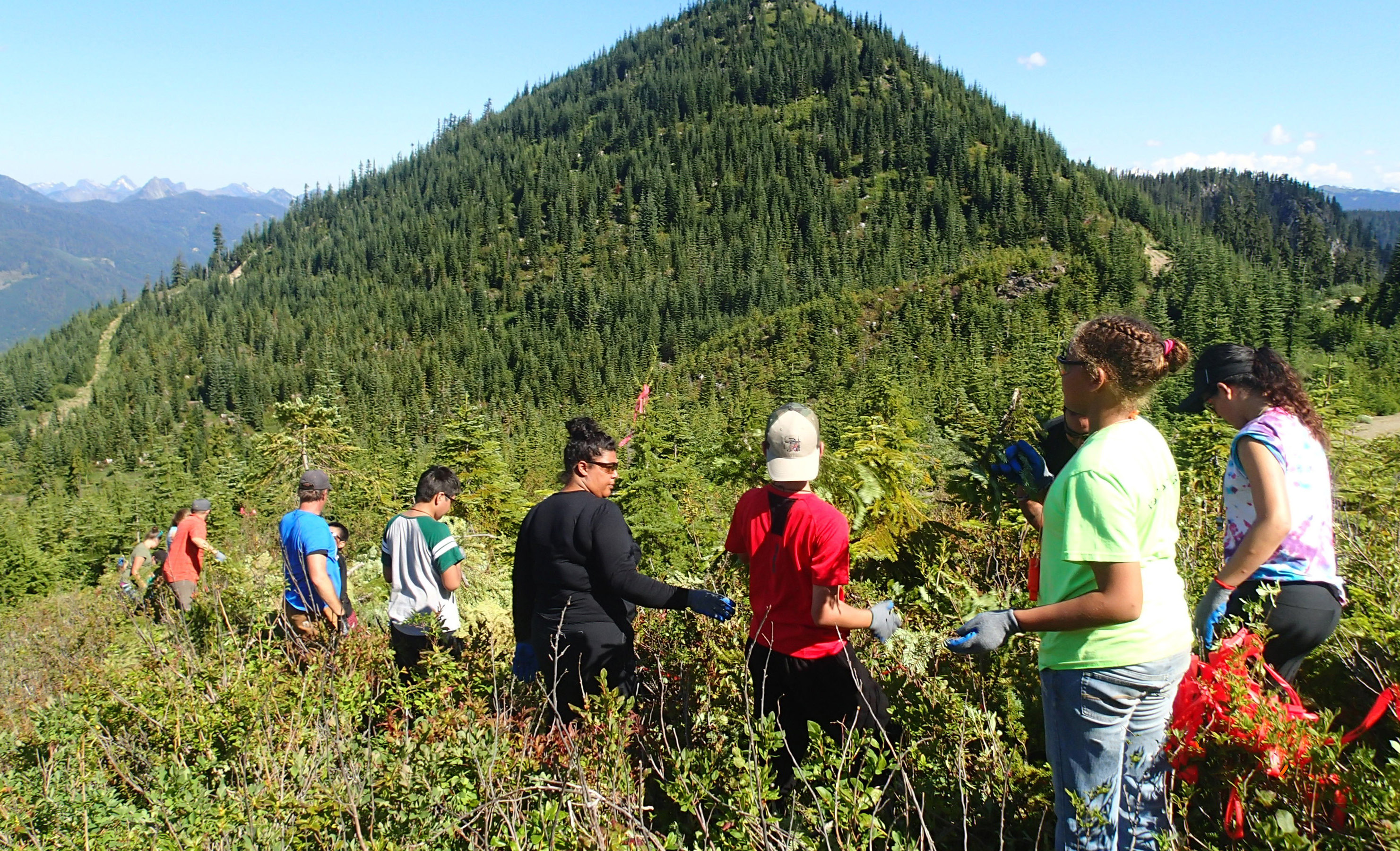 Tulalip Tribes preserve huckleberry grounds on ancestral territory in Washington