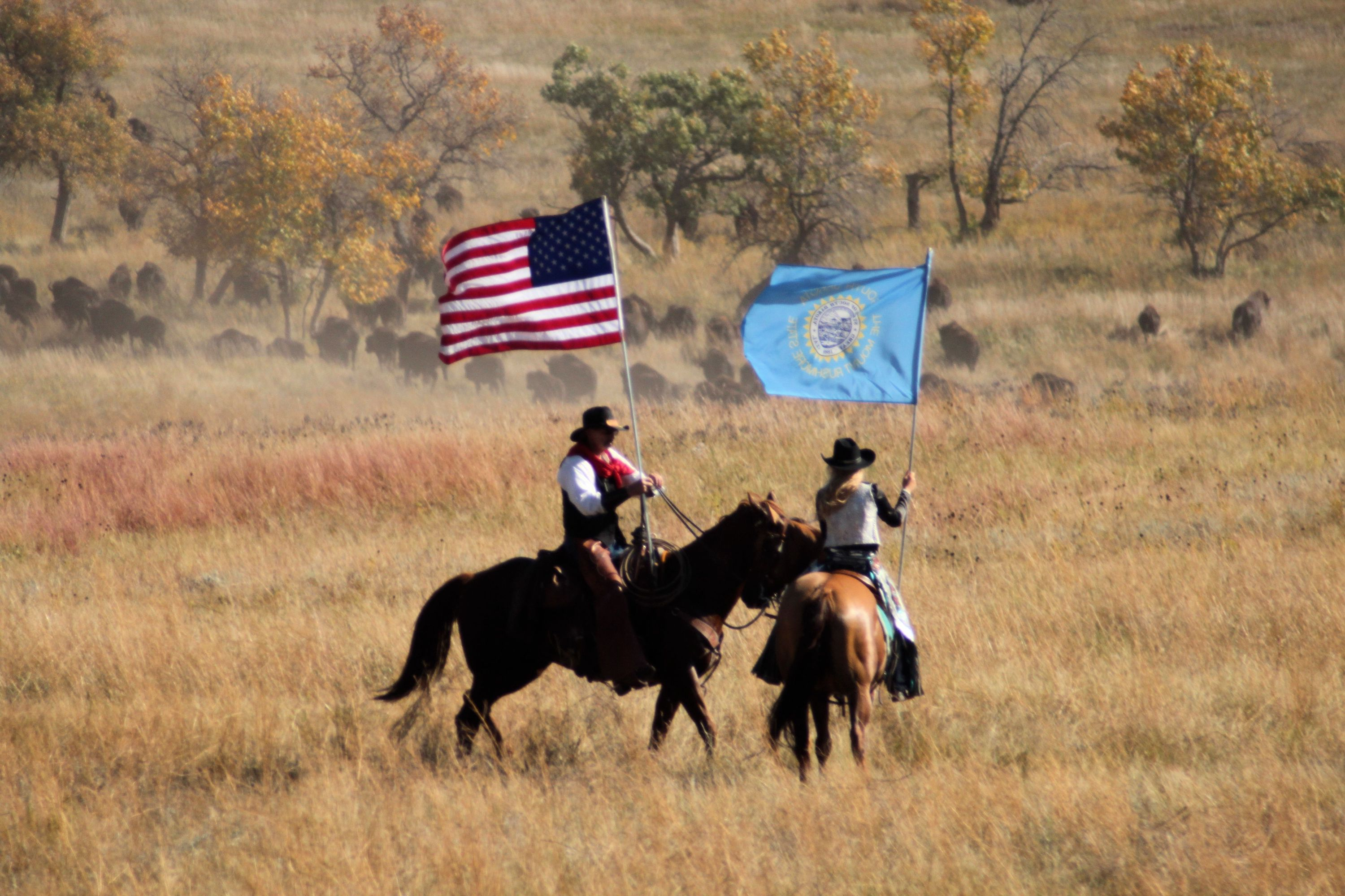 Tim Giago: South Dakota continues to ignore history with annual buffalo roundup