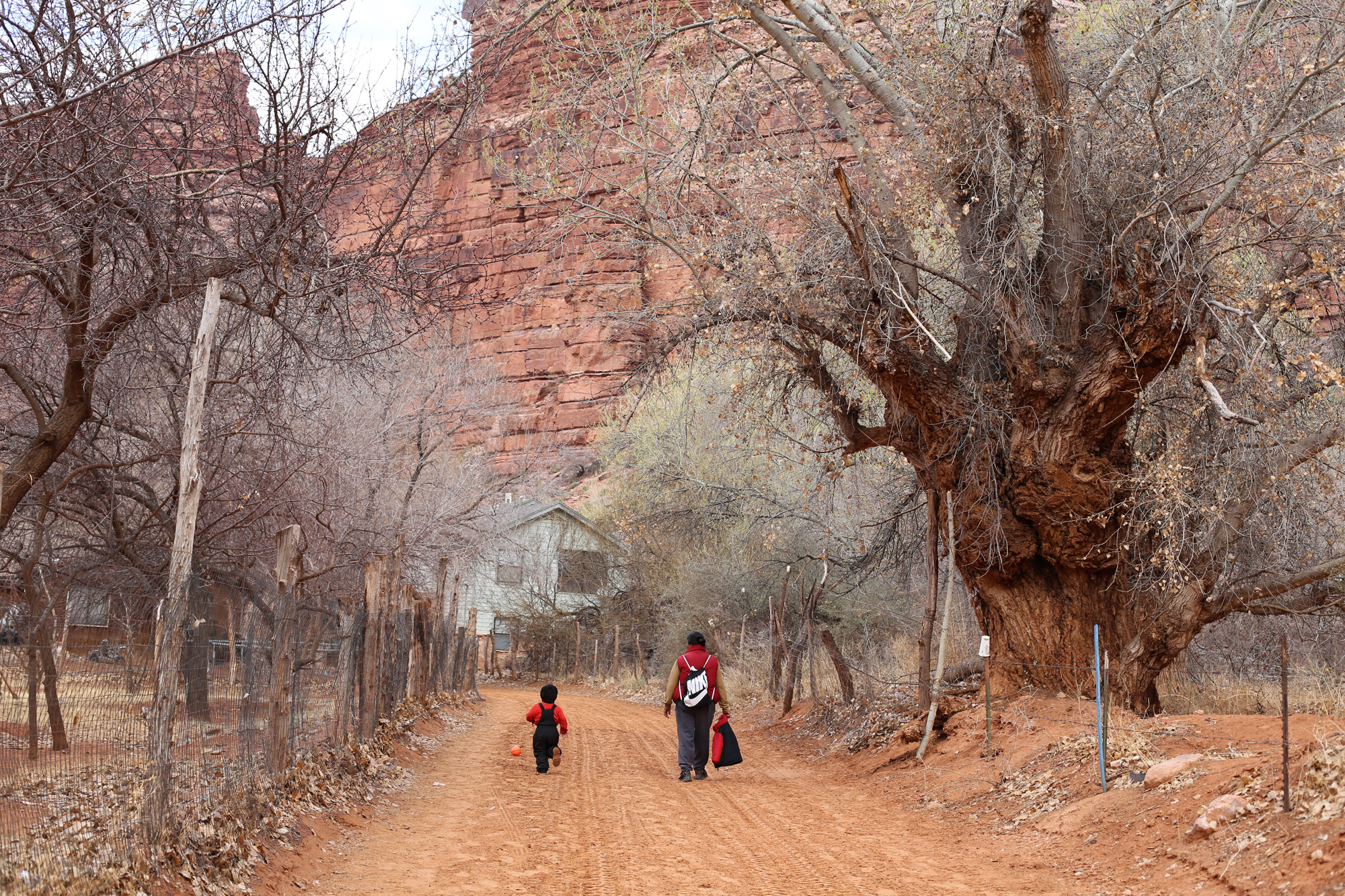 Vote counts by drone? County asks Havasupai Tribe to consider