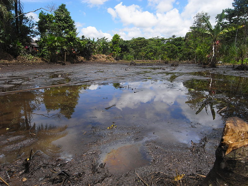 Chevron told to pay $9.5 billion judgment to indigenous communities