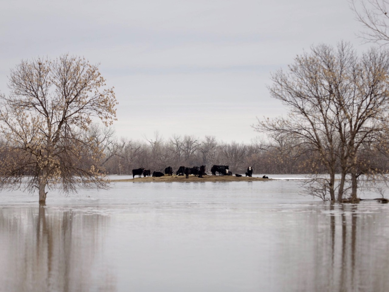 Cheyenne River Sioux Tribe declares emergency amid unprecedented flooding