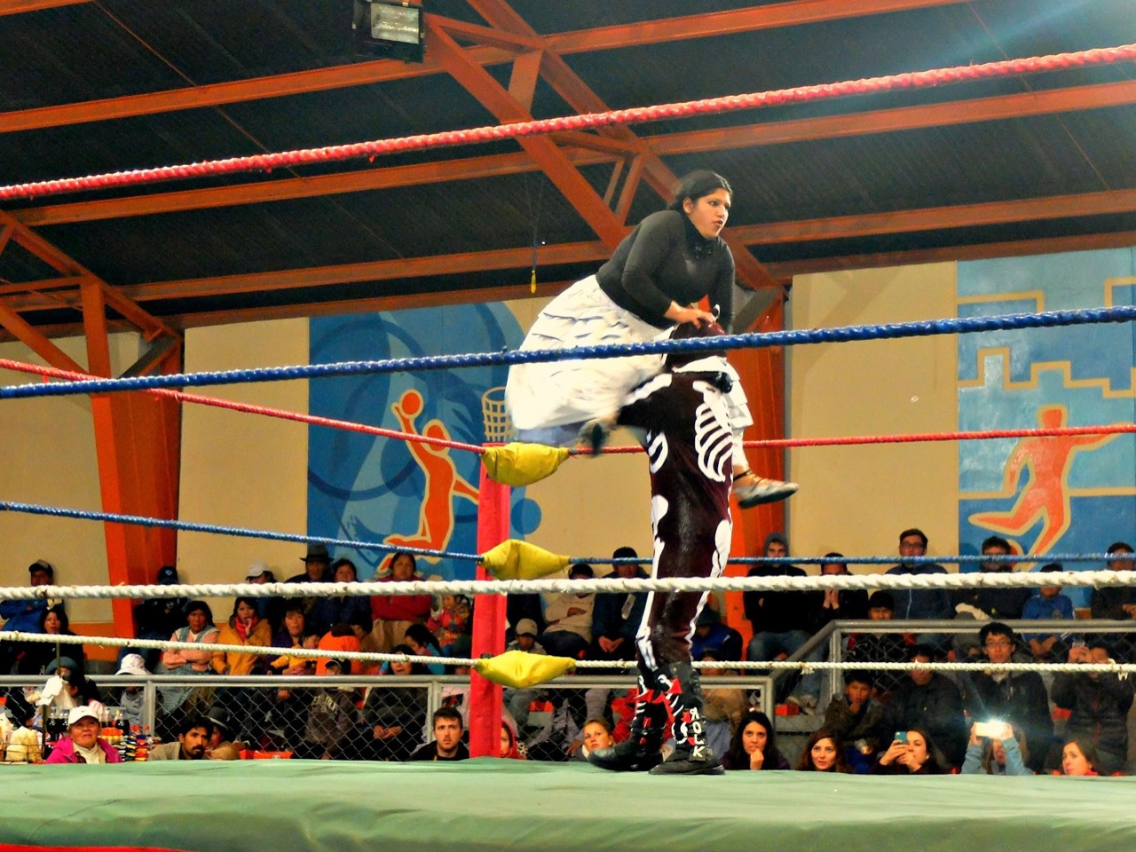 Nell Haynes: How indigenous women revolutionized Bolivian wrestling
