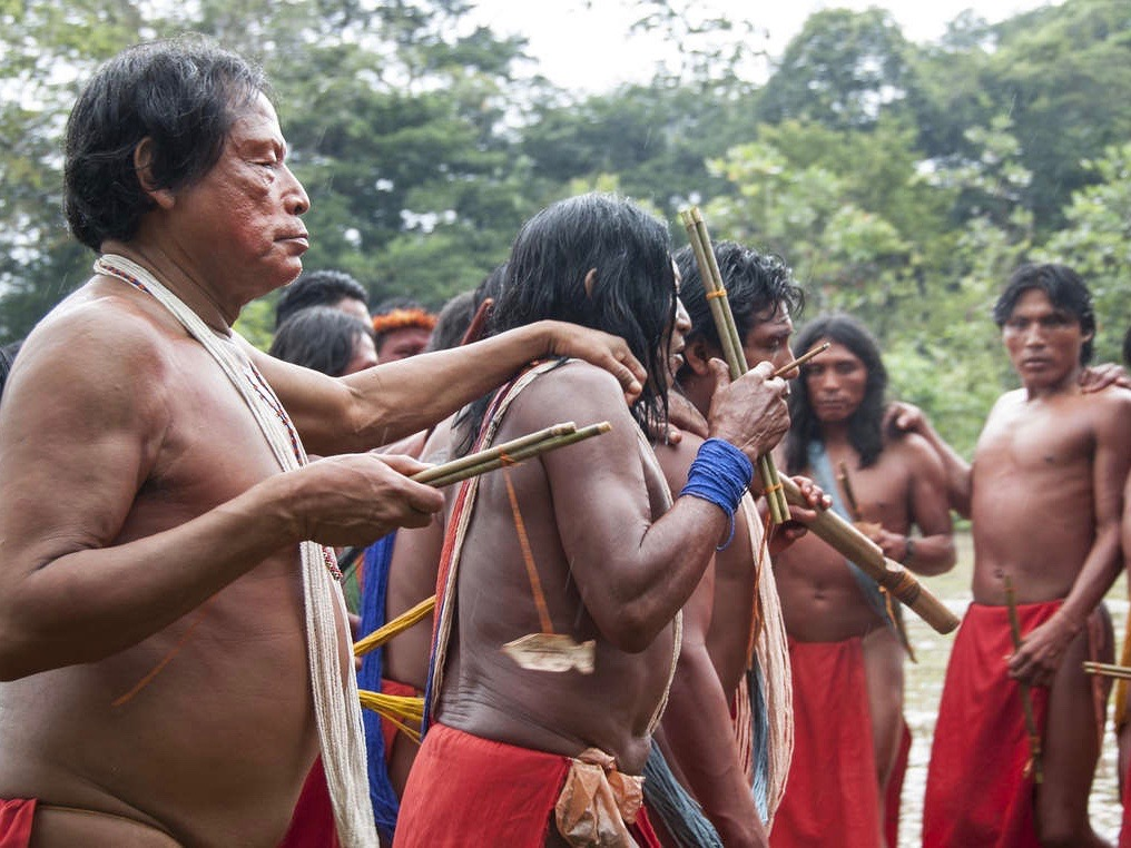 Death of Indigenous leader Emyra Wajãpi blamed on miners in Brazil