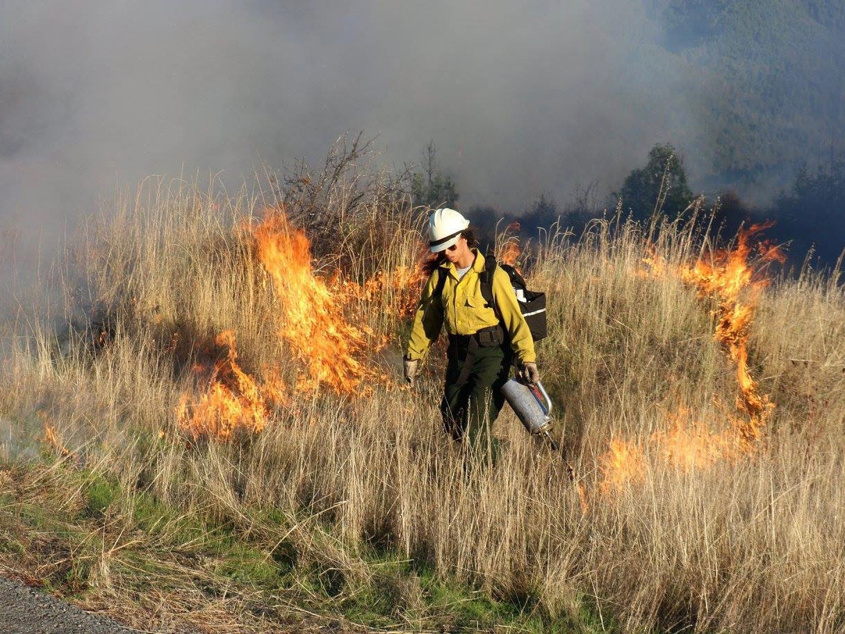 What western states can learn from Native American wildfire management strategies
