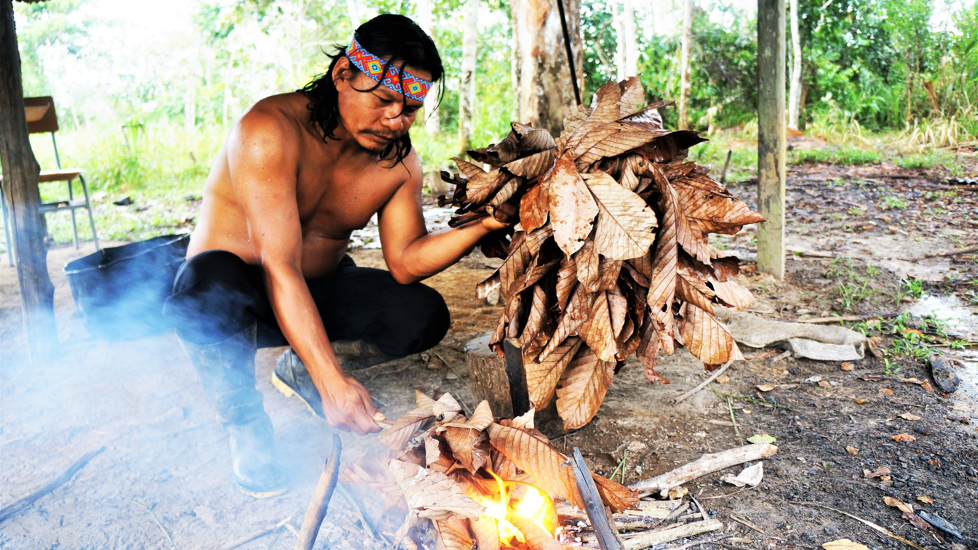 The Revelator: Indigenous peoples threatened in their own homelands
