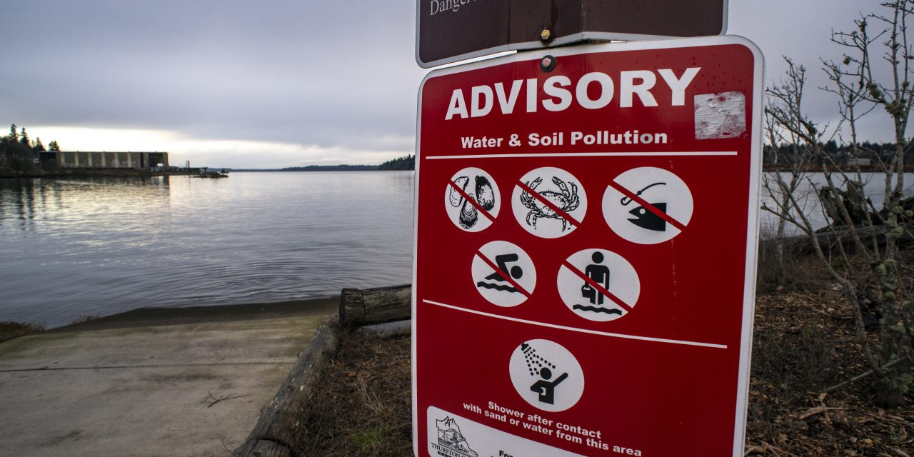 Being Frank: We must demand a healthy Puget Sound