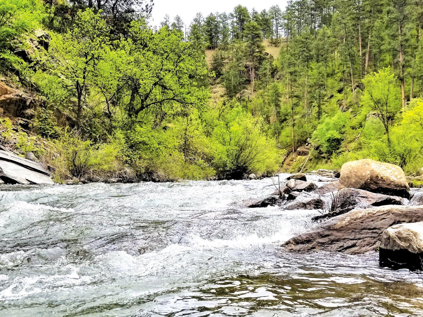 Native Sun News Today: New Rapid Creek Watershed Action to help tribes protect Black Hills